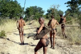 Africa's People
